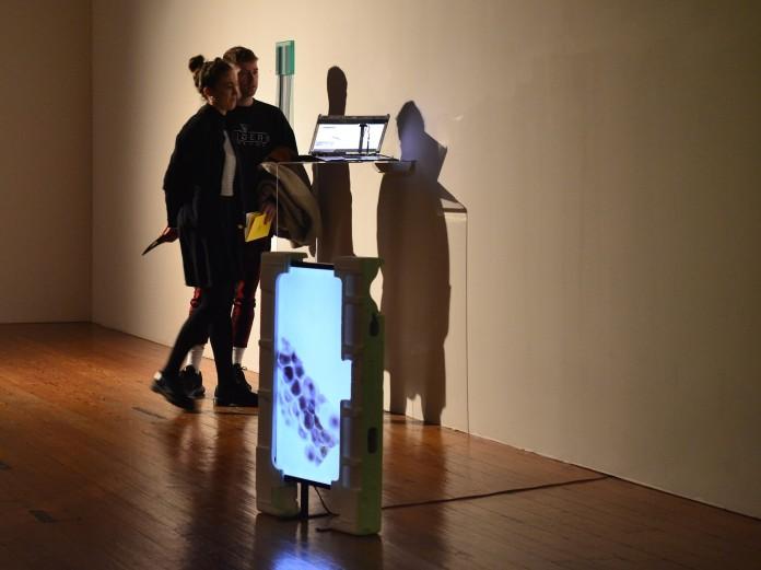Installation shot, RDS Visual Art Awards, 2019 (2)